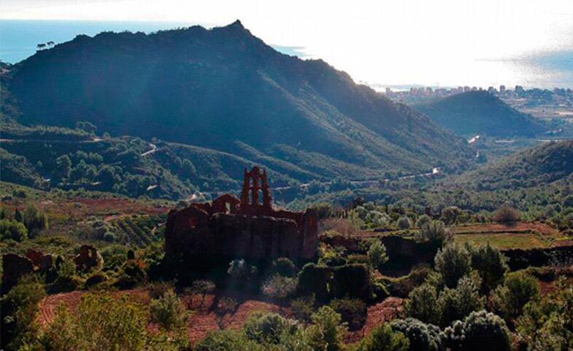 Excursión al Parque Natural del Desierto de las Palmas